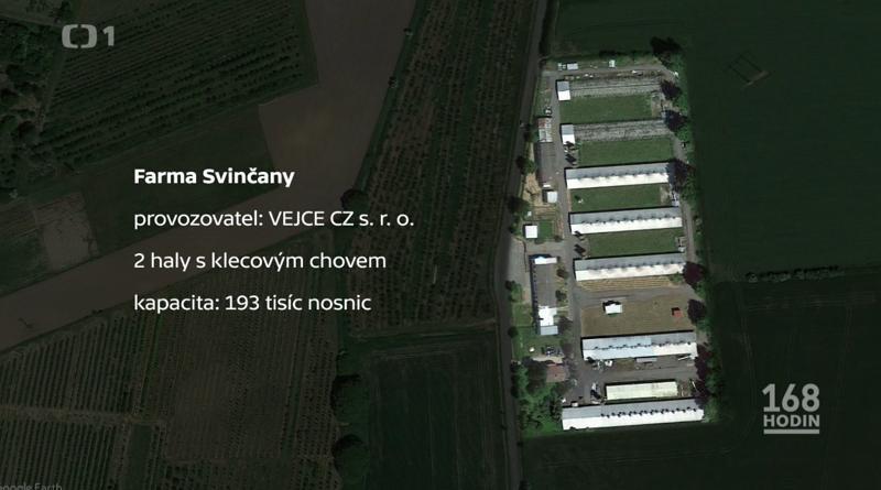 Kapacita nosnic farma Svinčany