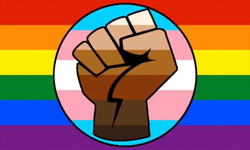 První LGBT Gay Trans Prode BLM vlajka