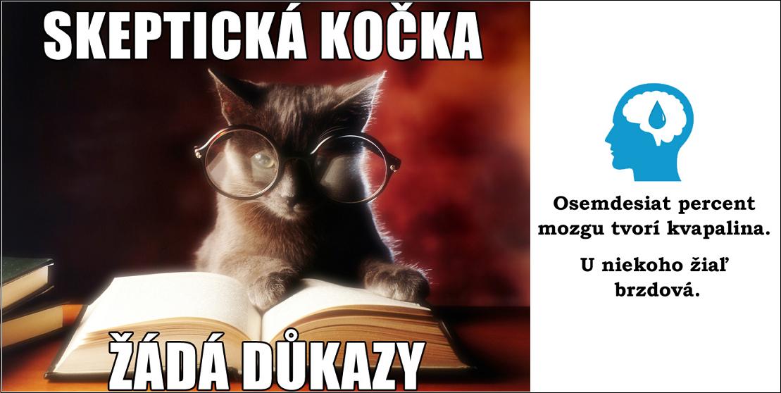 Skeptická kočka žádá důkazy
